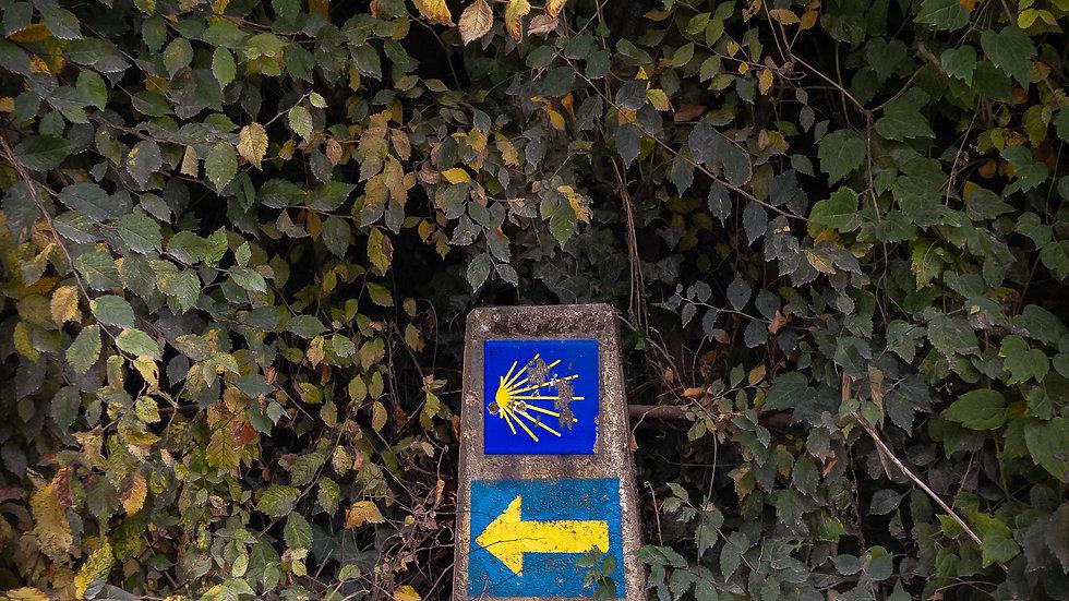 Guenduláin, Navarra