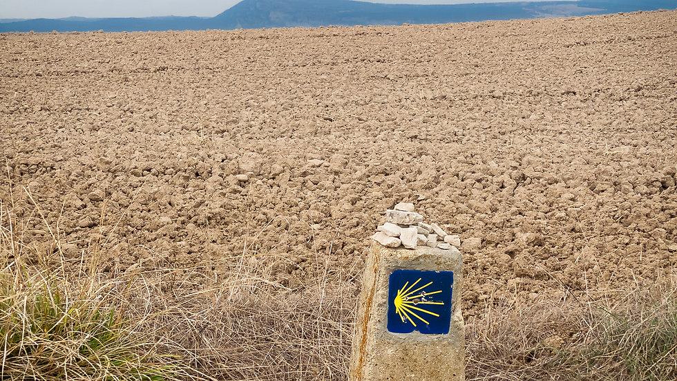 Zariquiegui, Navarra