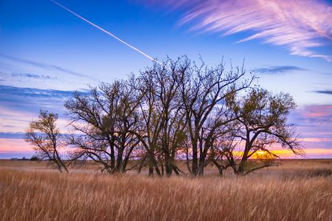 Ellis County, KS USA