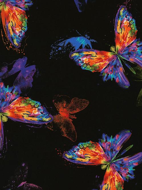 Rainbow Butterfly on Black