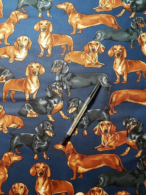 Dachshunds Dog Navy
