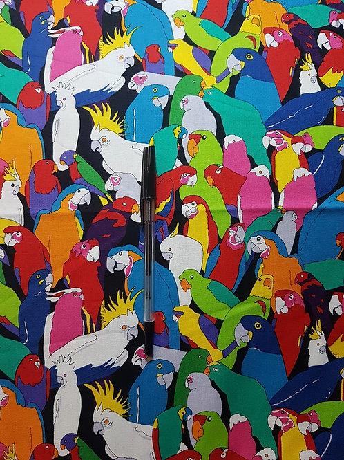 Rio - Rainbow Parrot