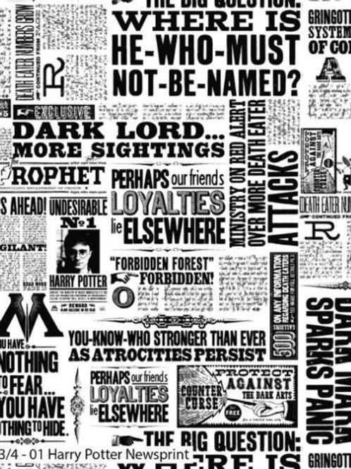 Harry Potter- Newsprint