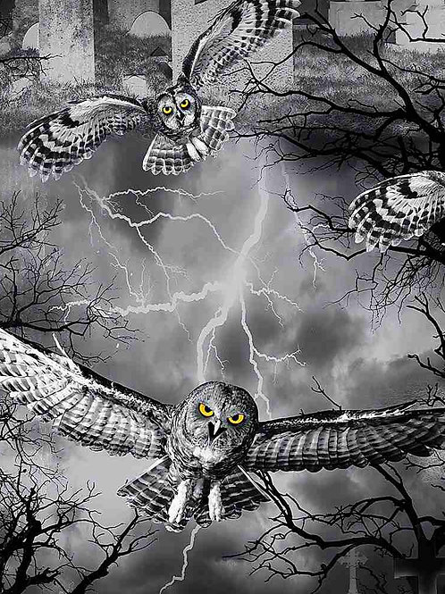 Owls in the Graveyard
