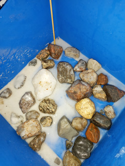 collecting stones