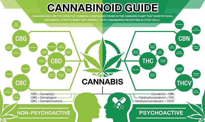 shutterstock-Cannabinoids.jpg
