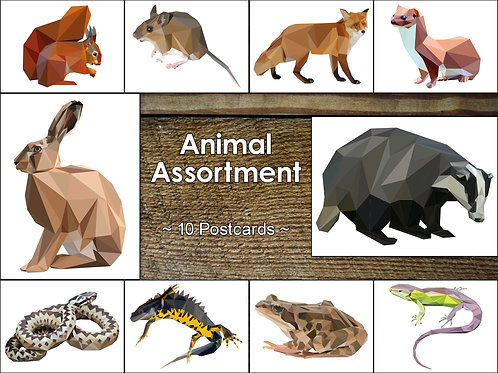 Mixed Pack of 10 Vertebrate Postcards