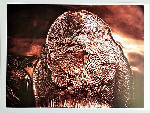 Copper Owl - Fine Art Print