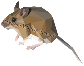 Wood Mouse-01.png
