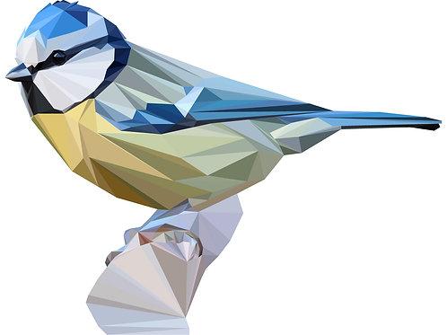 Geometric Bluetit - Vector illustration postcard