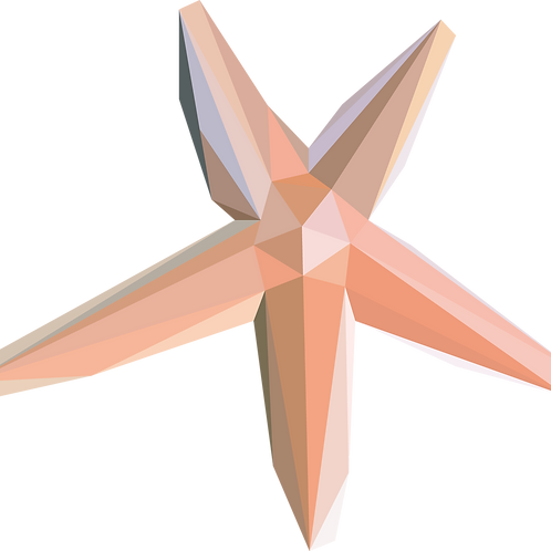 Geometric Starfish - Vector illustration postcard