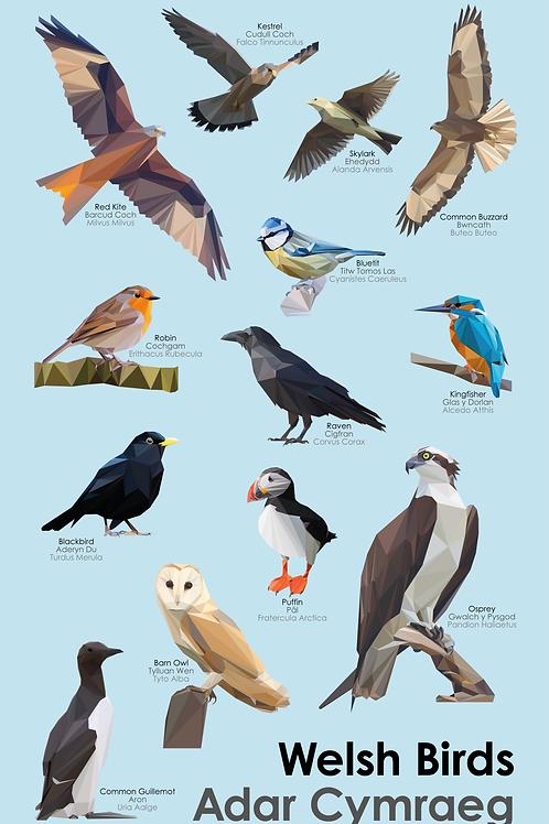 Welsh Birds Tea Towel - Lliain Sychu Llestri Adar Cymraeg