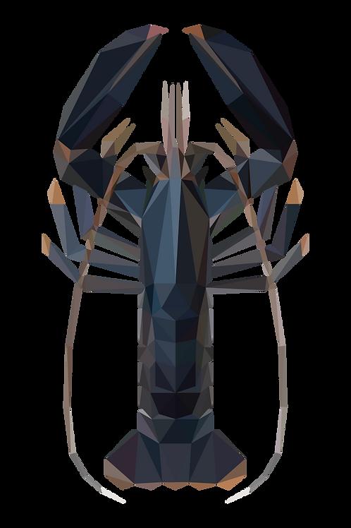 Geometric Lobster - Vector illustration postcard
