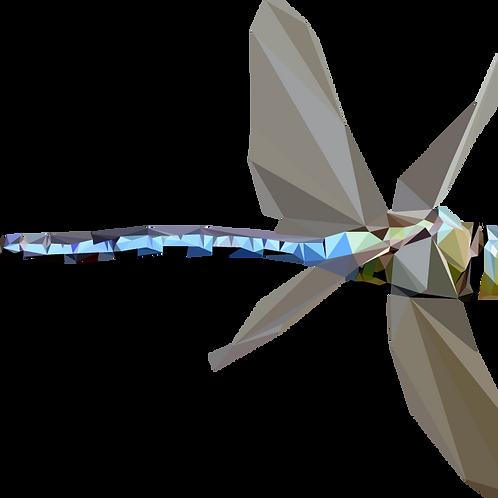 Geometric Dragonfly - Vector illustration postcard