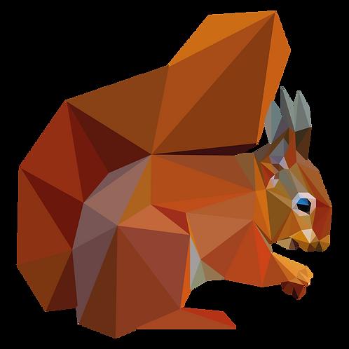 Geometric Red Squirrel - Vector illustration postcard