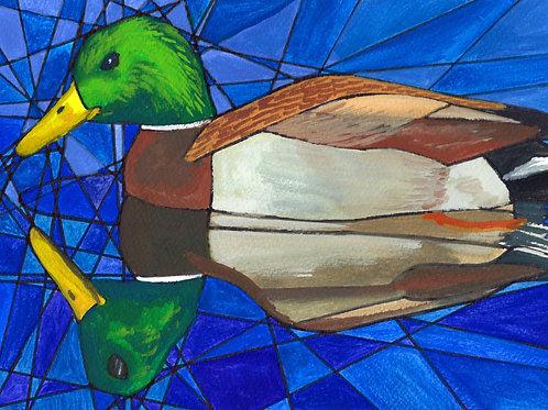 Duck Reflection - Fine art postcard