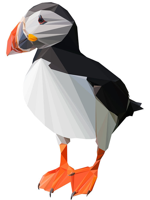 Geometric Puffin - Vector illustration postcard