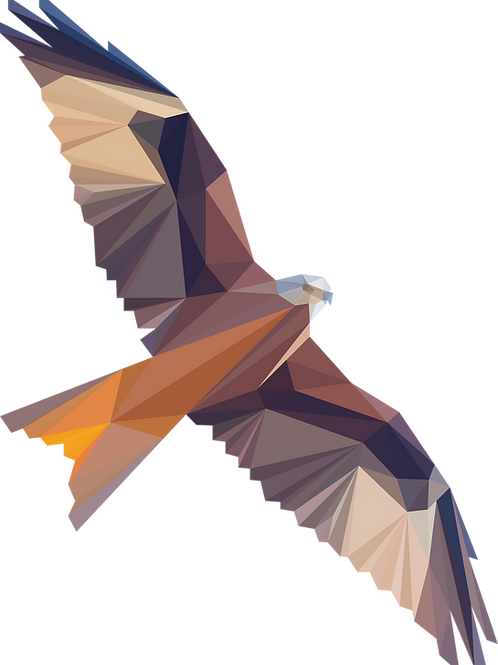 Geometric Red Kite - Vector illustration postcard