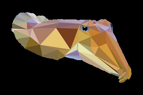 Geometric Cuttlefish - Vector illustration postcard