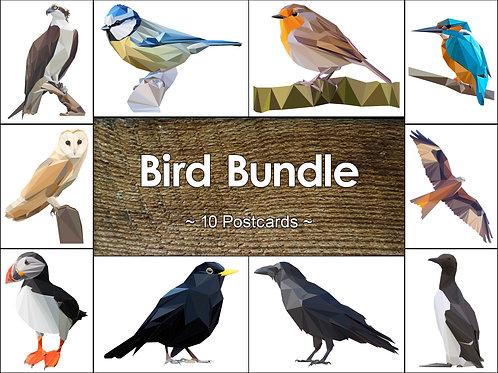 Mixed Pack of 10 Bird Postcards