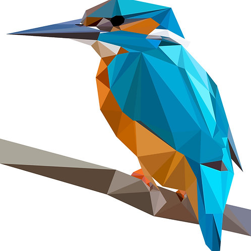 Geometric Kingfisher - Vector illustration greeting card