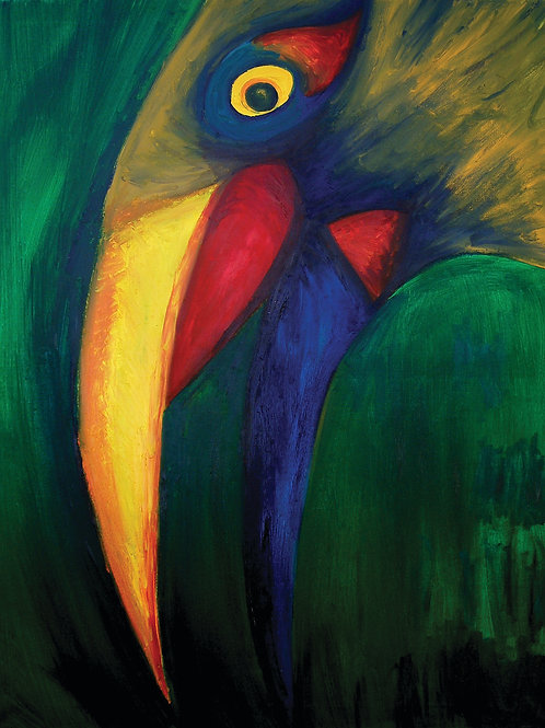 Toucan - Fine art postcard