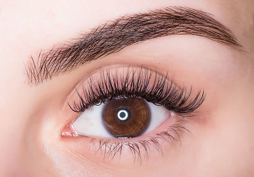 Macro photo of a female eye with make-up eyebrows and lashes ..jpg