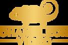 logo-chameleon-video.png