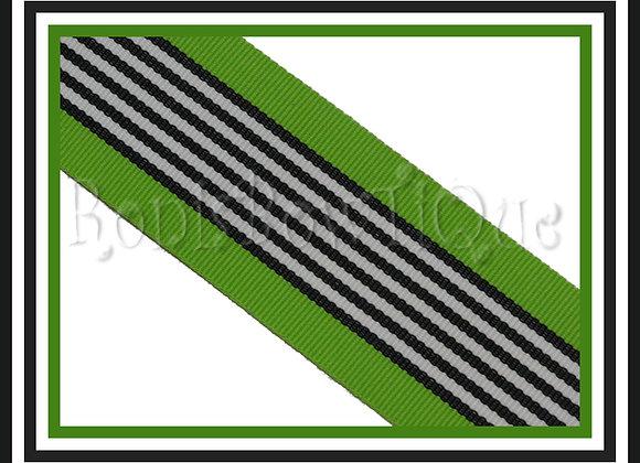 Lime Zebra Stripe Ribbon