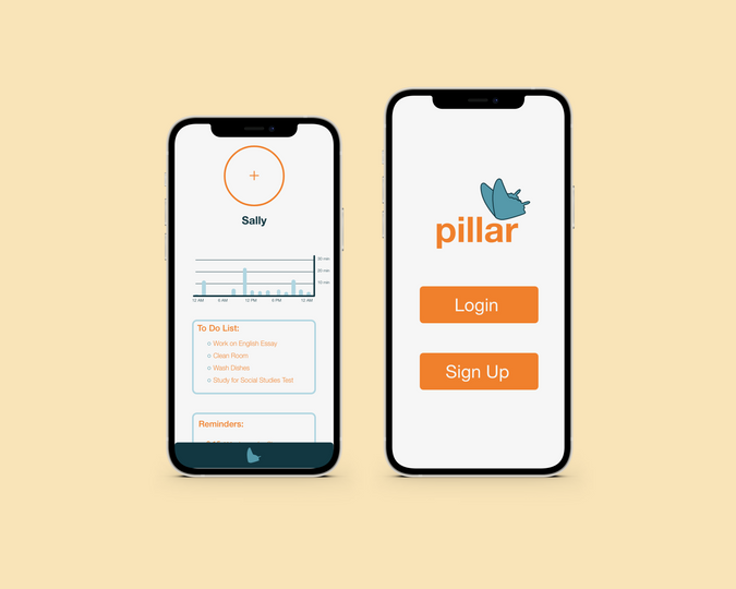 This is what you first see when you open the pillar app. Once you sign in, you will see the homescreen.