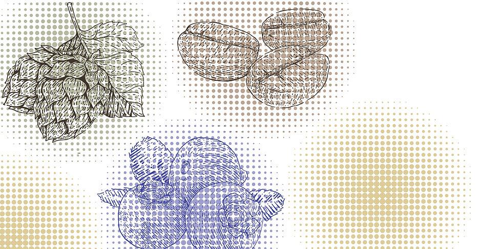 Flavor DrawingsCrop@5x-100.jpg