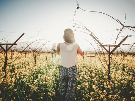 8 Tips for Finding The Right Spiritual Teacher
