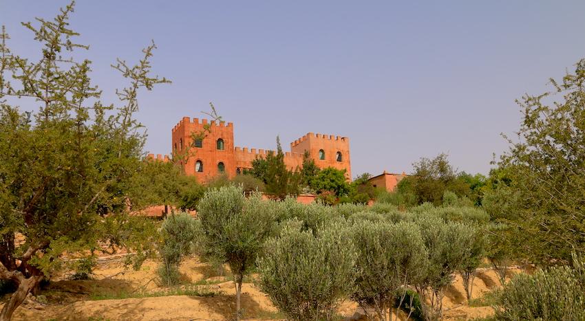 L'oliveraie de la Kasbah