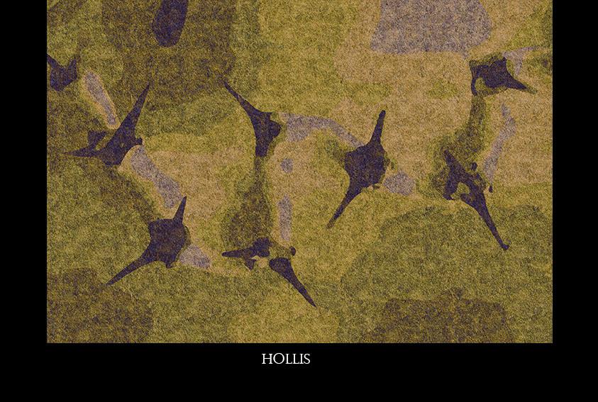 hollis.jpg