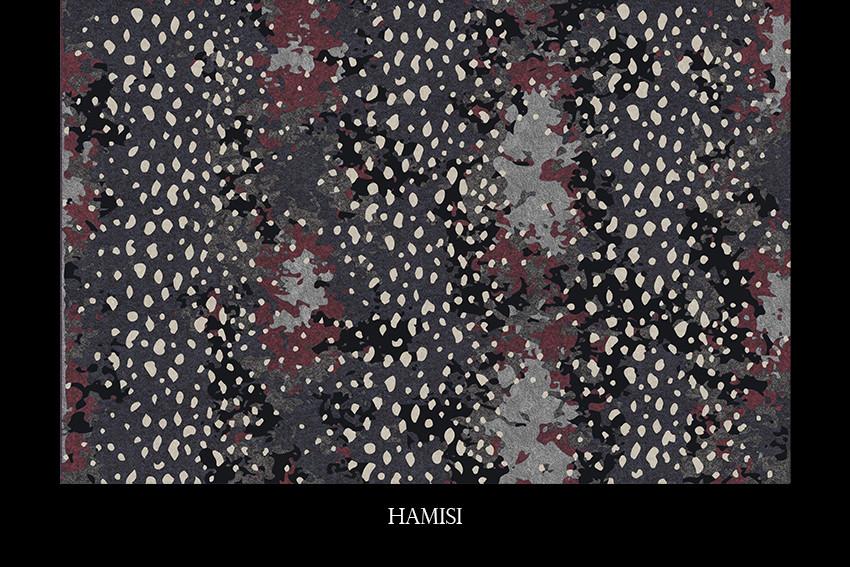 HAMISI.jpg