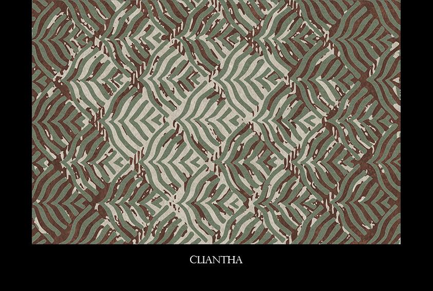 cliantha.jpg