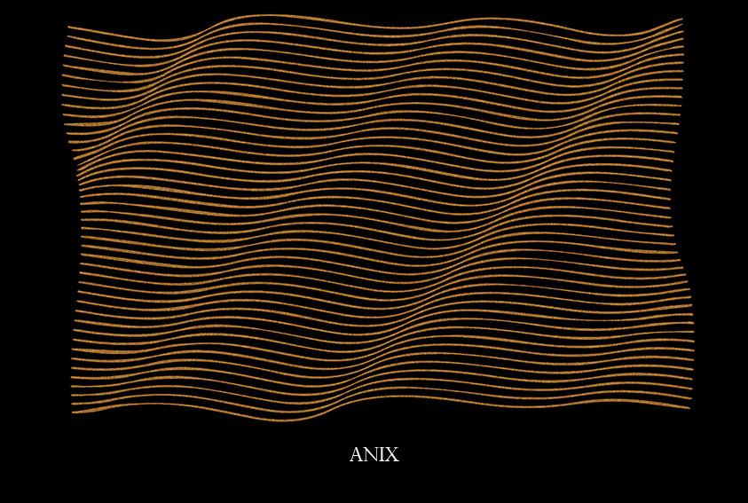 anix.jpg