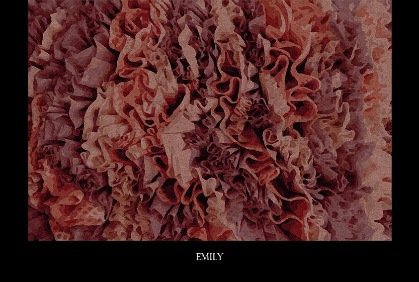 emily.jpg