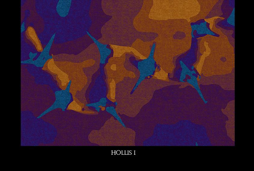 hollis i.jpg