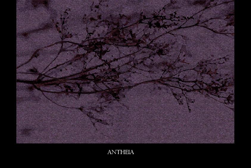 antheia.jpg