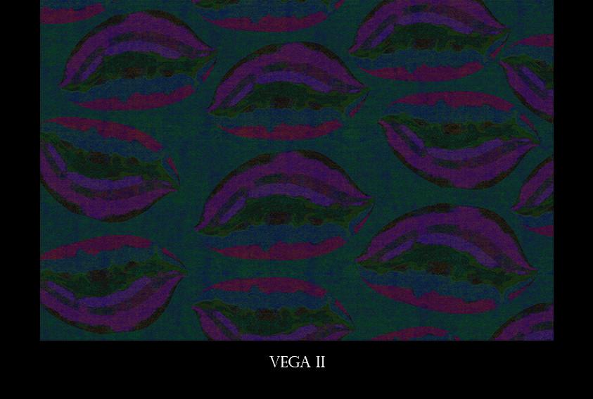 VEGA II .jpg