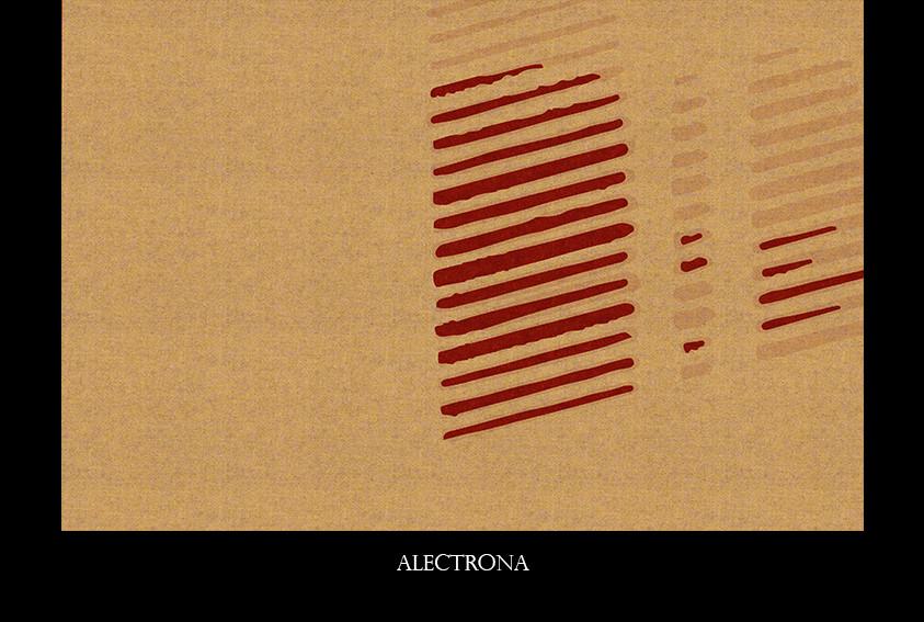 alectrona.jpg