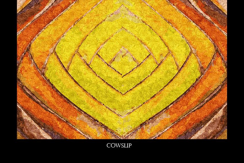 cowslip.jpg