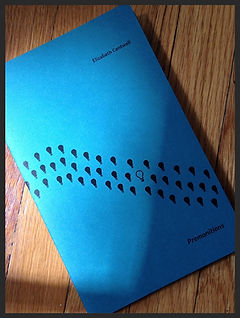 Premonitions (Grey Book Press, 2014) by Elizabeth Cantwell
