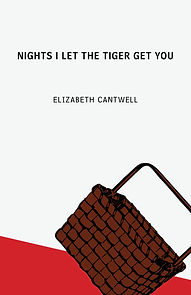 Nights I Let The Tiger Get You, by Elizabeth Cantwell