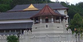 Kandy,Tannens Tempel, Mithudama Travel