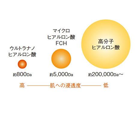 図2_edited.jpg