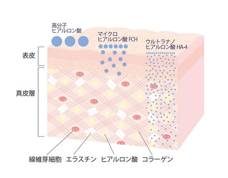 図3.jpg