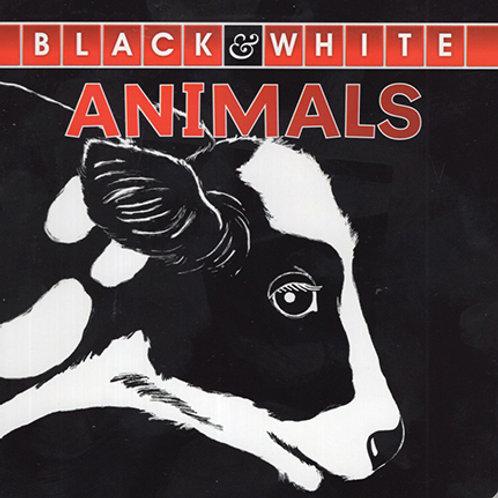 B&W Animals - Cow