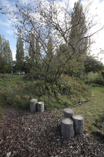 Proeftuin Erasmusveld 15.jpg